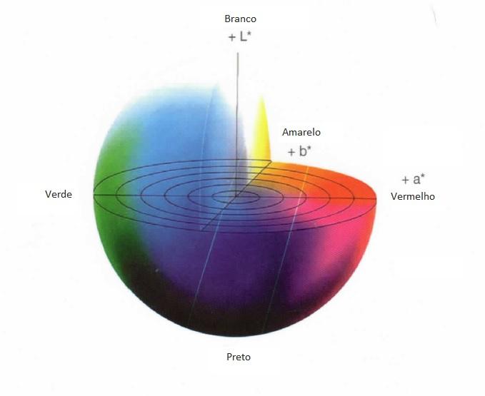 Esfera-de-cores[1]